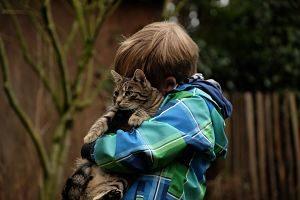 Imagen de un niño abrazado a un gato