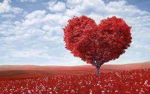 Imagen de un árbol en forma de corazón